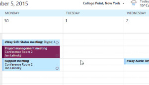 Calendar in CRM for Microsoft Outlook