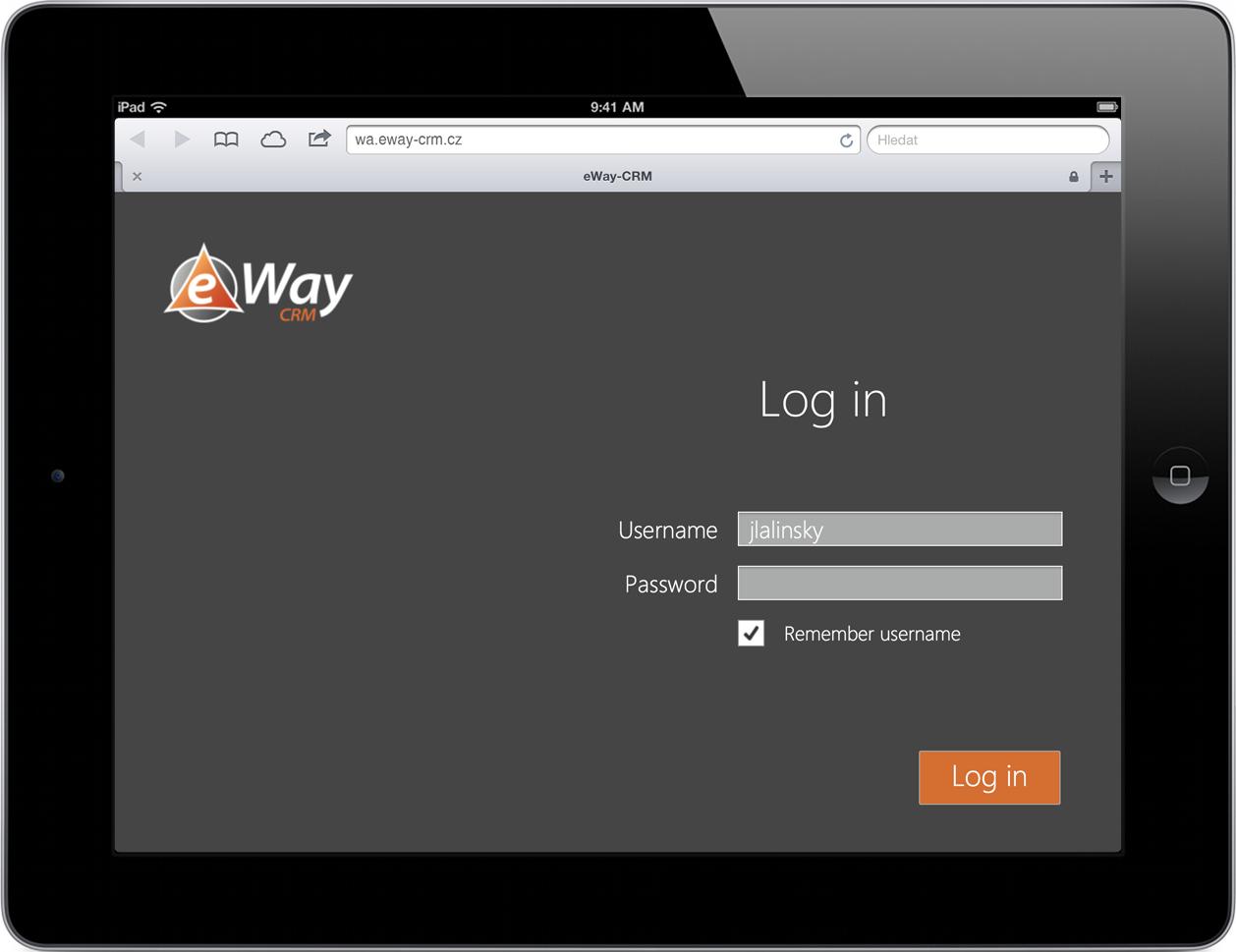 eWay-CRM Web Access Log In Screen