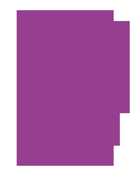 DPI Revit