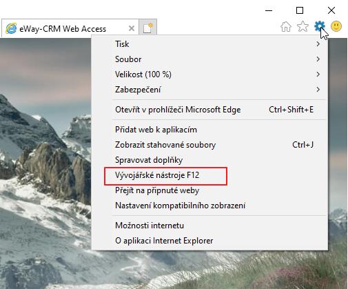 Internet Explorer vývojářské nástroje