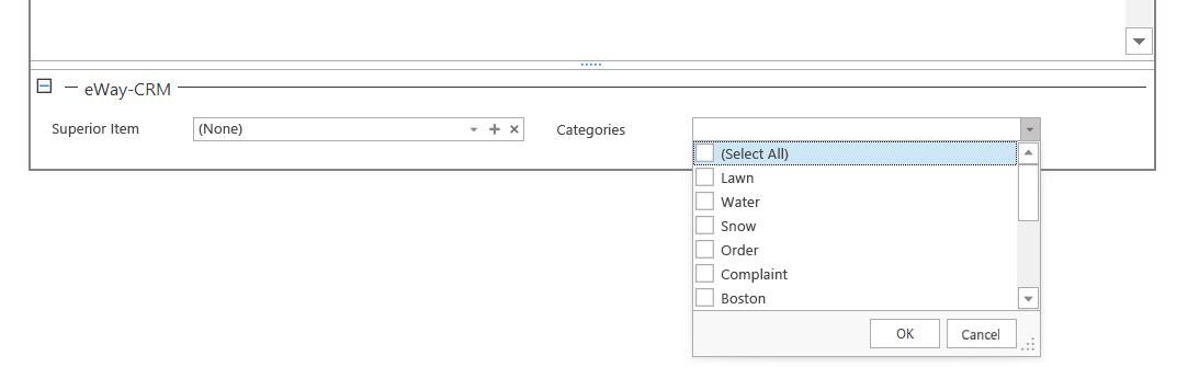 eWay-CRM categories